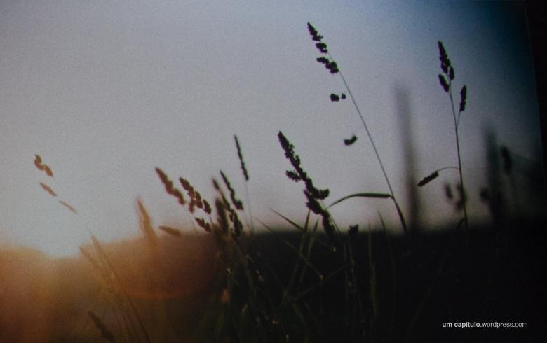 uc_fuji_09